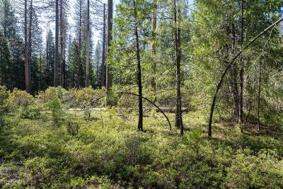Grizzly Flats Residential Lots & Land For Sale: 3.4 Acres Huggy Bear Lane