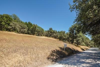 Pilot Hill Residential Lots & Land For Sale: 7251 Chalet Way