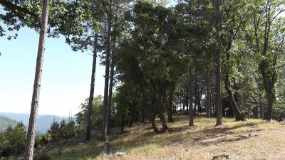 Colfax Residential Lots & Land For Sale: 1551 Dusty Road