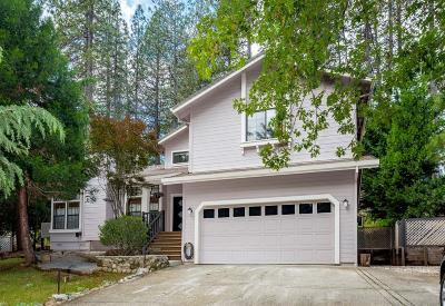 Grass Valley Single Family Home For Sale: 14625 Pammy Way