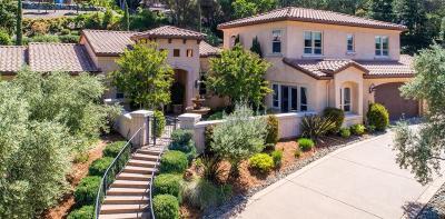 El Dorado Hills Single Family Home For Sale: 1695 Carnegie Way