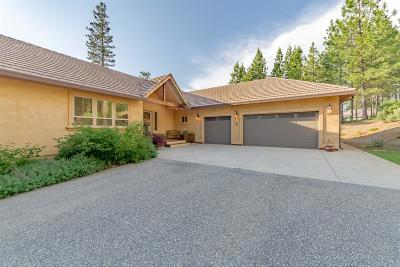 Foresthill Single Family Home For Sale: 5040 Bella Vista Circle