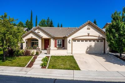 Folsom Single Family Home For Sale: 984 Seabough Court