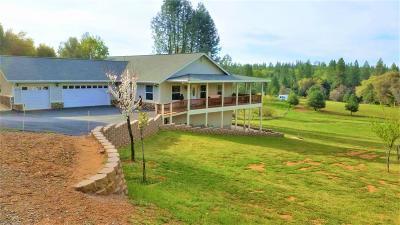 El Dorado County Single Family Home For Sale: 2778 Buckboard Road