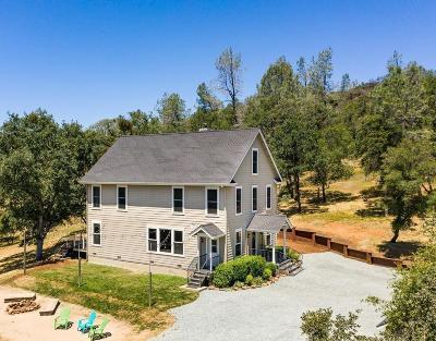 Grass Valley Single Family Home For Sale: 15670 Roving Way