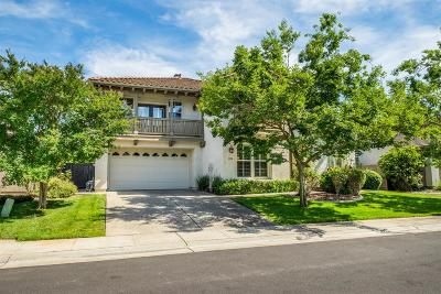 Elk Grove Single Family Home For Sale: 3329 East Pintail Way