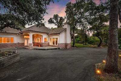 Granite Bay Single Family Home For Sale: 8377 Oak Knoll Drive