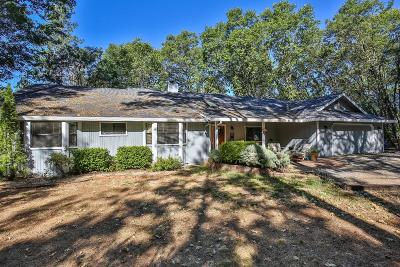 Foresthill Single Family Home For Sale: 20060 Hosmer Mine Ct