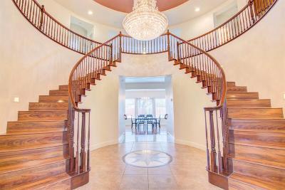 Elk Grove Single Family Home For Sale: 9875 Cortino Way