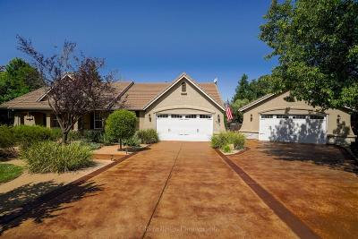 Placer County Single Family Home For Sale: 4135 Miners Trail