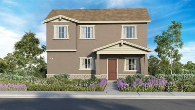 Sacramento Single Family Home For Sale: 3604 Bayou Road