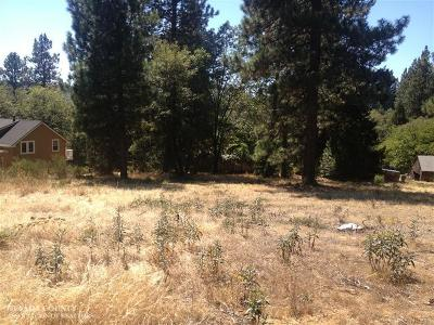 Nevada City Residential Lots & Land For Sale: 631 Chief Kelly Drive