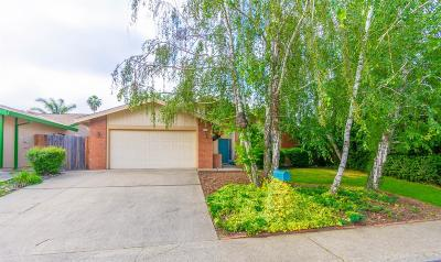 Rancho Cordova Single Family Home Contingent: 11032 Cilker River Way