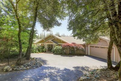 Nevada County Single Family Home For Sale: 10171 Sun Ridge Court