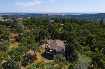 Shingle Springs Single Family Home For Sale: 4280 Thunder Lane