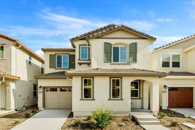 Sacramento Single Family Home For Sale: 2509 Buzz Aldrin Way