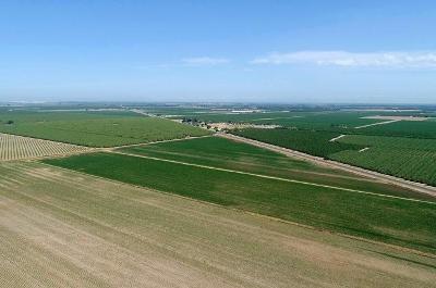 San Joaquin County Commercial Lots & Land For Sale: 11495 South Van Allen Road