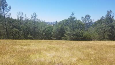 Penn Valley Residential Lots & Land For Sale: 20375 Deer Meadow