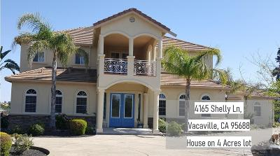 Vacaville Single Family Home For Sale: 4165 Shelly Lane