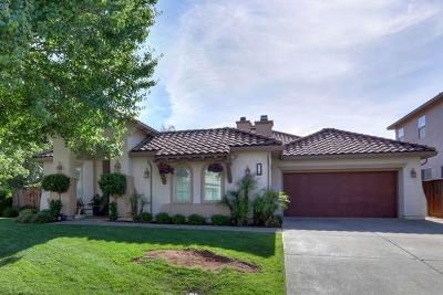 Elk Grove Single Family Home For Sale: 9650 Saren Court