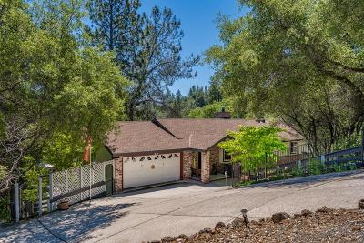 Grass Valley Single Family Home For Sale: 17245 Aileen Way