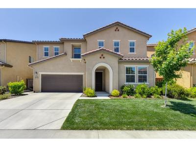 Roseville Single Family Home For Sale: 5233 Maestro Way