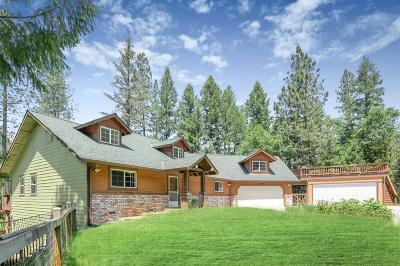 Grass Valley Single Family Home For Sale: 14235 Arrowhead Mine Road