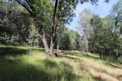 Grass Valley Residential Lots & Land For Sale: 11640 Surrey Drive