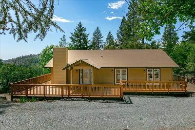 Pollock Pines Single Family Home For Sale: 5031 Shooting Star Road