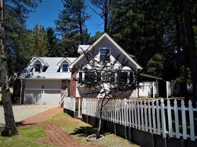 Grass Valley Single Family Home For Sale: 11344 Edward Drive