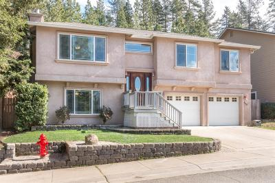El Dorado County Single Family Home For Sale: 855 Estey Way