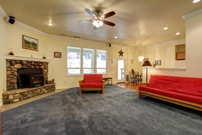 Foresthill Single Family Home For Sale: 6225 Baywood Court