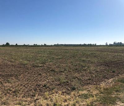 San Joaquin County Commercial Lots & Land For Sale: 7609 East Kettleman Lane
