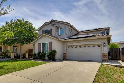 Elk Grove Single Family Home For Sale: 8686 Melville Drive