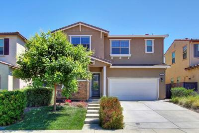 Sacramento County Single Family Home For Sale: 8426 Belcastel Way