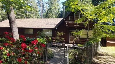 Pollock Pines Single Family Home For Sale: 6075 Dolly Varden