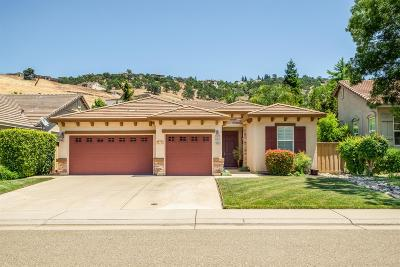 Folsom Single Family Home For Sale: 1003 Hildebrand Circle