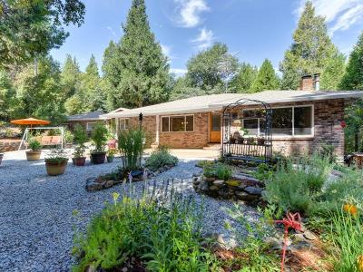 Amador County Single Family Home For Sale: 24523 Defender Grd