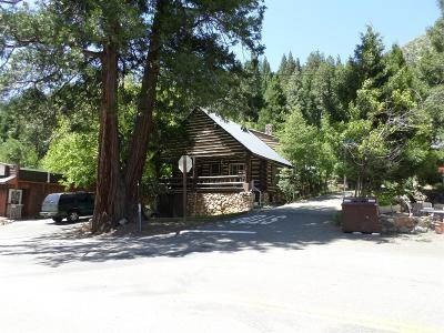 Sierra County Single Family Home For Sale: 209 Main Street