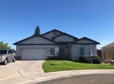 Elk Grove Single Family Home For Sale: 8401 Gentian Court
