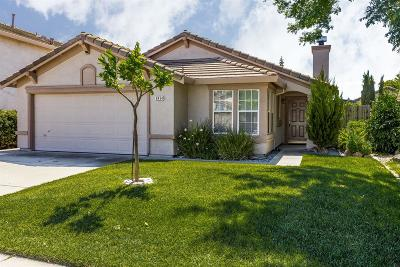 Elk Grove Single Family Home For Sale: 8434 Ardelle Way