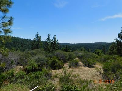Rail Road Flat CA Residential Lots & Land For Sale: $110,000
