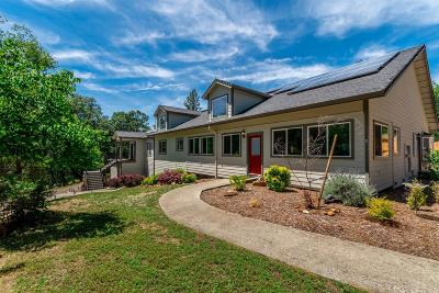 Meadow Vista Single Family Home For Sale: 1990 Naturewood Drive