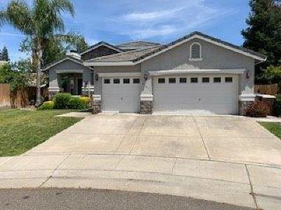 Elk Grove Single Family Home For Sale: 9707 Blue Parrot Court