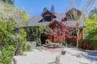 Nevada City Single Family Home For Sale: 10655 Park Avenue #Ext