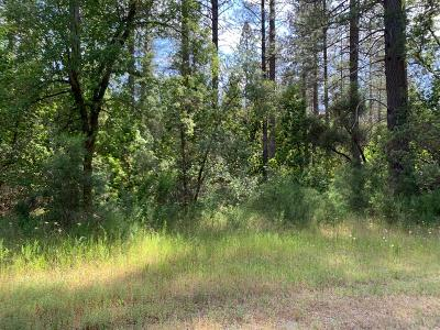 Nevada City Residential Lots & Land For Sale: 10050 Apache Trl Trail