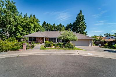 Sacramento Single Family Home For Sale: 4119 Giselle Court