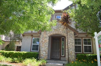 Mountain House Single Family Home For Sale: 678 West Refinado Way