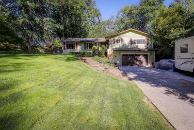 Grass Valley Single Family Home For Sale: 16646 Alioto Drive