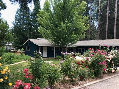 Grass Valley Single Family Home For Sale: 13015 Greenhorn Road